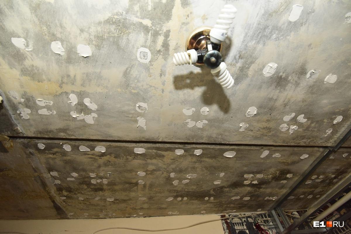Из-за того, что протекает крыша, Маргарита не может закончить ремонт. Но она не винит в протечке сад Николая Ивановича