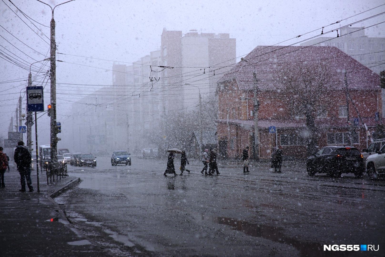 роза снег в омске сегодня фото тексты