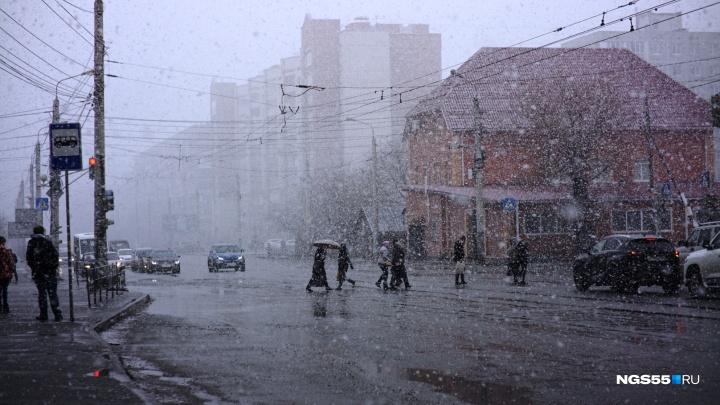 Опять метель: Омск засыпает мокрым снегом второй день подряд