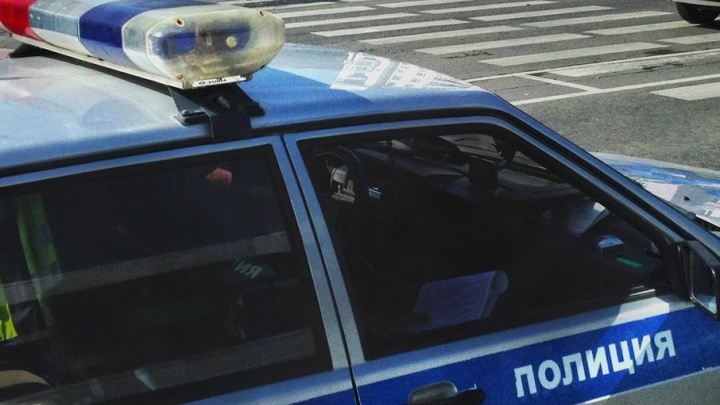 В Петухово водитель не хотел показывать груз и попытался выкинуть полицейского из машины