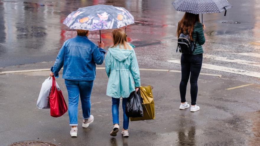 МЧС предупреждает пермяков о сильном ветре и дожде