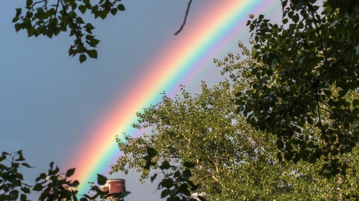 Активисту из Москвы запретили проводить гей-парады в Самарской области