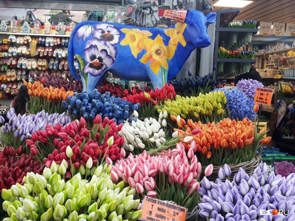 Смотрите, какая красота на рыночке. Про тюльпаны здесь рассказывают много легенд