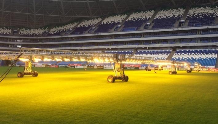 Засеяли 600 кг семян: поле «Самара Арены» подготовят к новому сезону