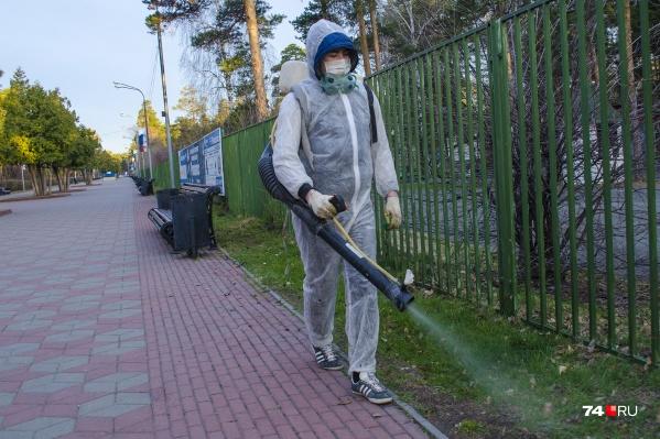 В Челябинске уже началась обработка скверов и парков от клещей