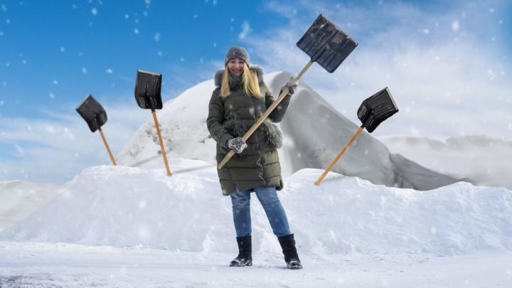 Перелопать это: шесть действенных и не очень способов заставить чиновников убрать снег