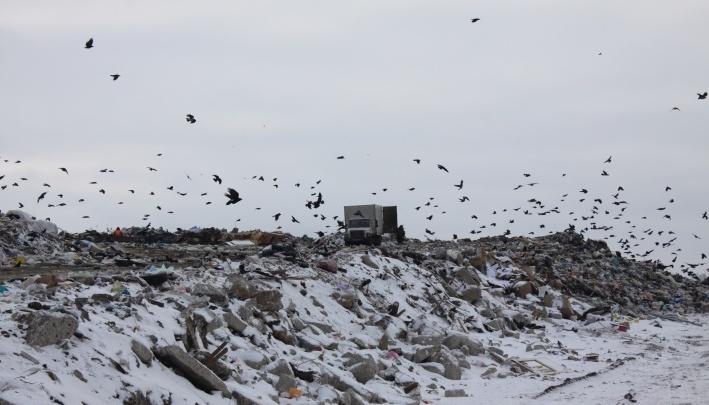 Региональные власти планируют закрыть полигоны для вывоза мусора