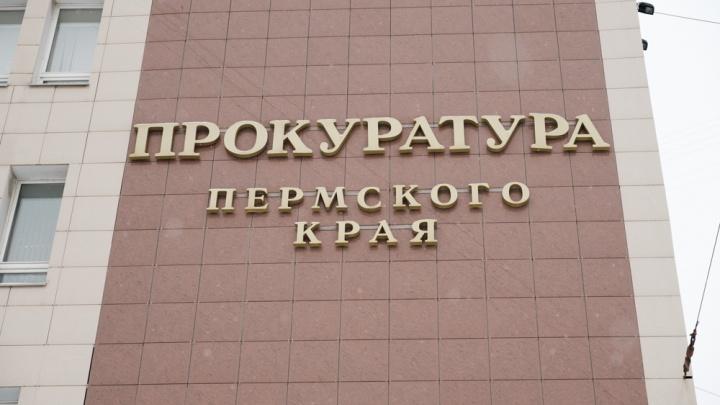 Прокуратура Прикамья проверит, законно ли возбудили уголовное дело на инвалида, прописавшего друга