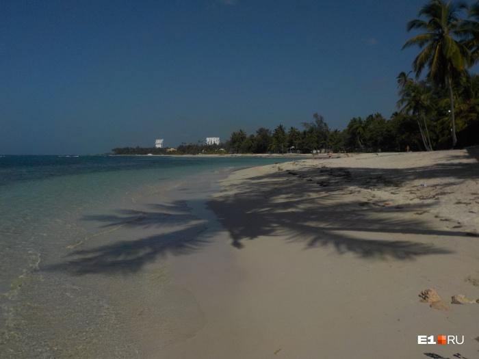 Прекрасная Доминикана: море, пляж, карибский рай