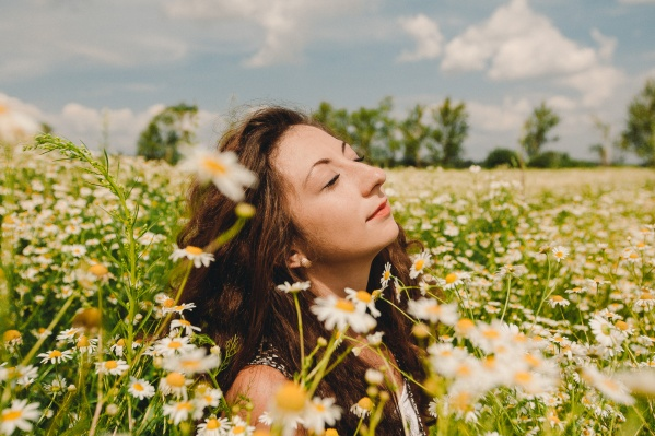 Хочется такое же фото? Тогда отправляйтесь на ромашковое поле. А где оно находится— читайте в нашем«полевом» репортаже