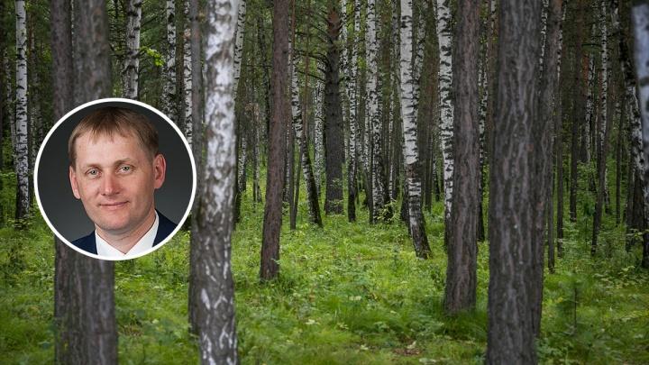 В Красноярском крае задержан депутат и бывший лесник. Весной его уволили после крупной проверки
