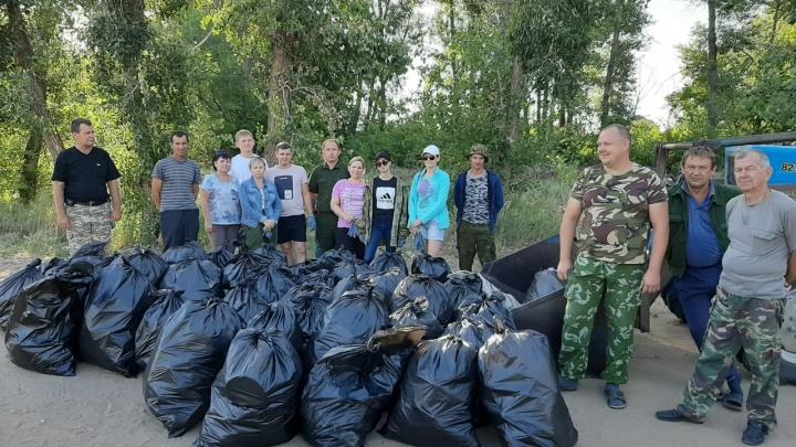 Пять кубов мусора выгребли волгоградские чиновники из леса на Бобрах