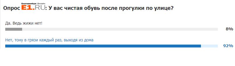 Больше трех тысяч читателей проголосовали за то, что обувь у них после прогулки по городу становится грязной