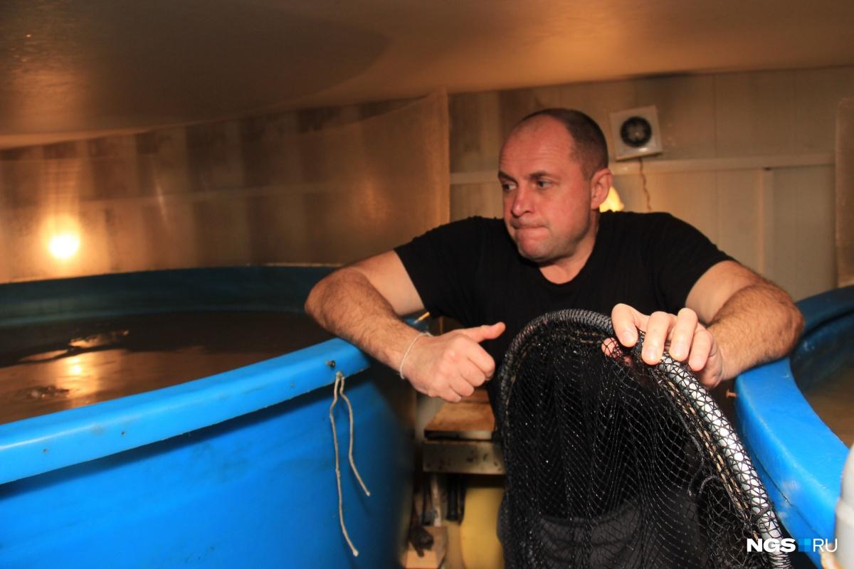 Игорь Чернов взялся за разведение сомов в начале 2017 года