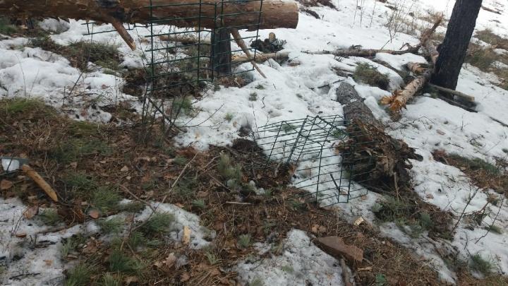 На Николаевской сопке после схода снега обнаружилась свалка строительного мусора