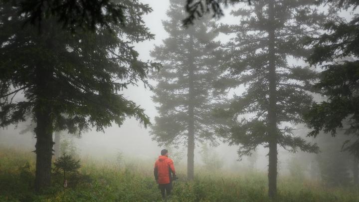 Прогуляемся в облаках? 7 мистических пейзажей Урала от фотографа из Екатеринбурга