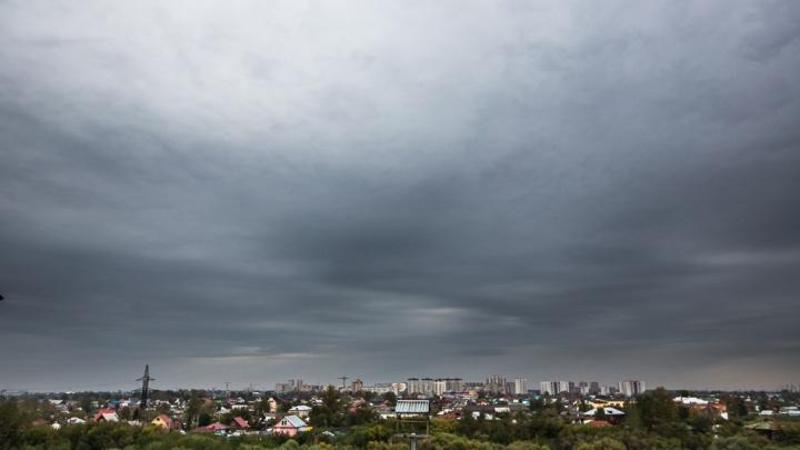Синоптики предупреждают о сильном ветре, который идёт на Тюмень