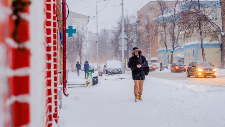 В Прикамье оттепель сменится похолоданием до -25 °С