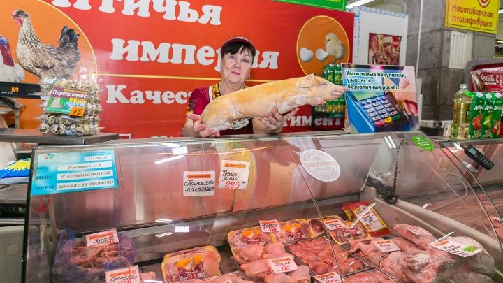Быстро сметут: в Новосибирск привезли молочных поросят и жирных гусей