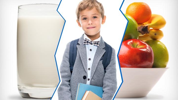 Уроки стоя, стакан молока и пятидневка: власти придумали новшества для челябинских школ в 2020 году