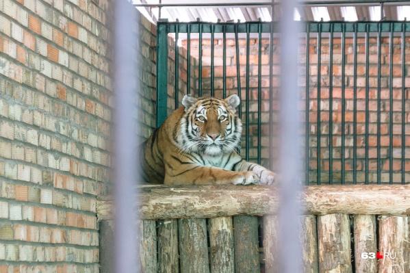 В зоопарке проживают почти 2000 животных