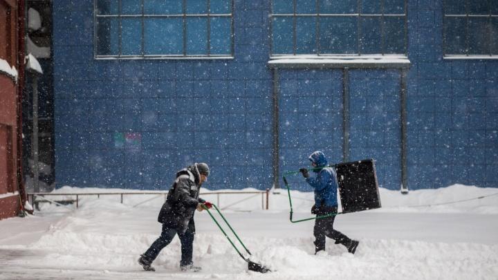Почему Новосибирск заносит снегом: объясняет синоптик