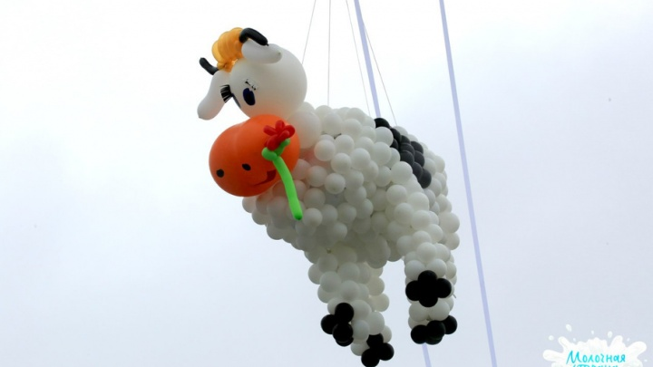 В Уфе пройдёт самый большой фестиваль молока в стране