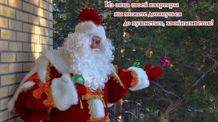 Квартиры в честь Нового года продают с огромными скидками