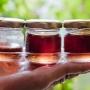 Ученые против мифов. Спасет ли мед от простуды и можно ли есть его засахаренным