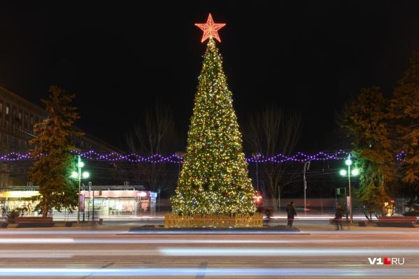 Волгоградцам пообещали Новый год с мокрым снегом