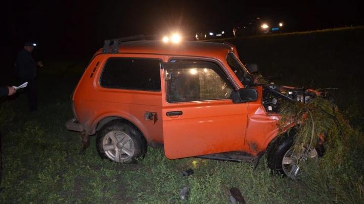 В Башкирии пассажира «Нивы» убило бревном