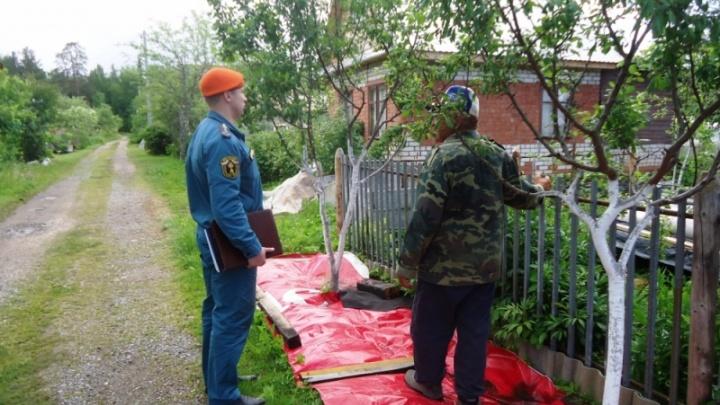 «Это для вашей безопасности»: в Ярославской области силовики устроили облаву на дачников