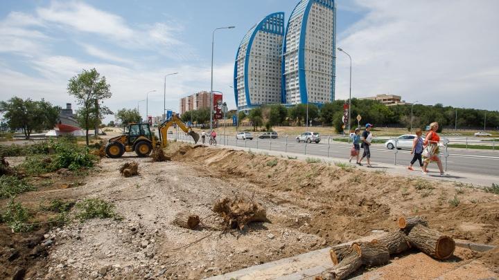 В Волгограде начали рубить деревья вокруг памятника«Гасителю»