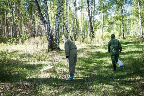 Жителей просят быть острожными при посещении леса