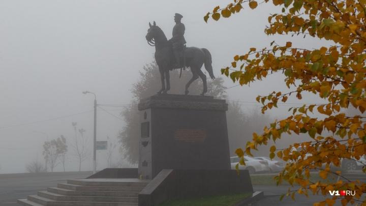 Чем дальше в зиму, тем теплее: на Волгоградскую область вместо снега обрушится морось