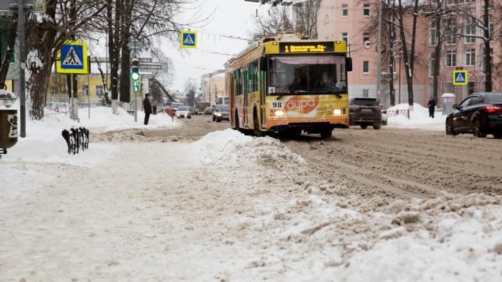 Пострадали пешеходы: в центре Ярославля автобус и троллейбус сбили людей