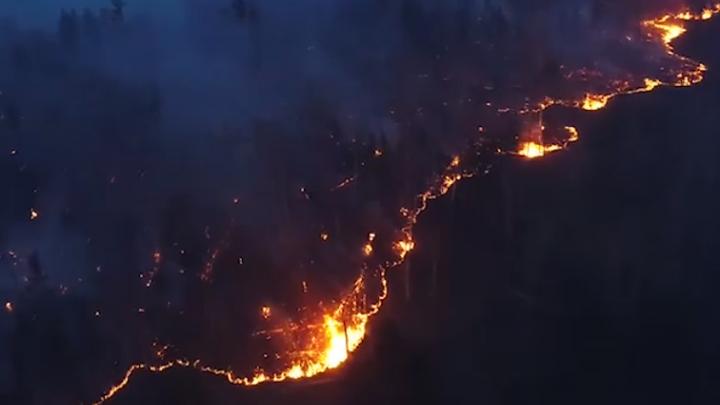 Видеоподборка: как выглядят лесные пожары в Сибири