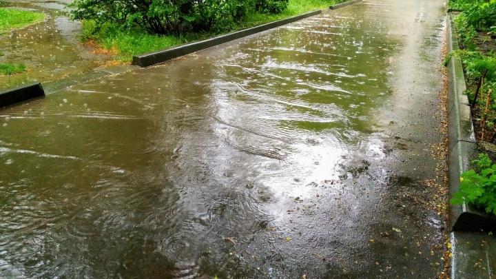 В Кургане будет прохладно, дождливо, ночью +5. Может, лучше без выходных?