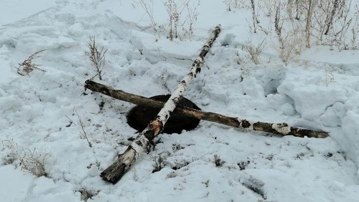Колодец, в который провалилась омичка с собакой, накрыли березовыми брёвнами