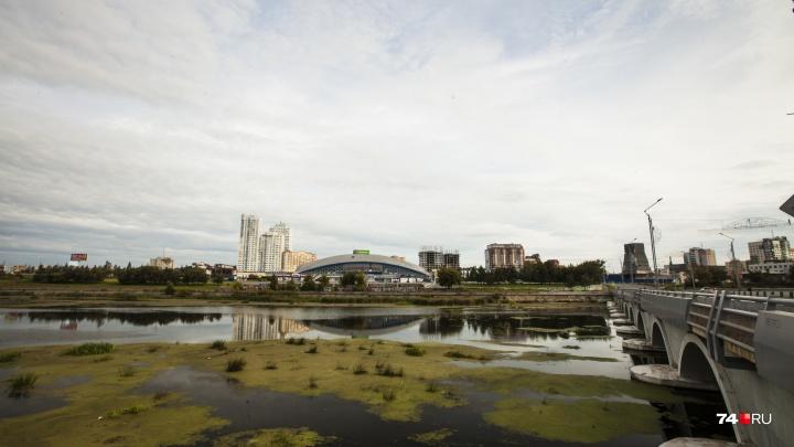 «Уберут кустарники и пни»: в Челябинске определились с началом очистки реки Миасс