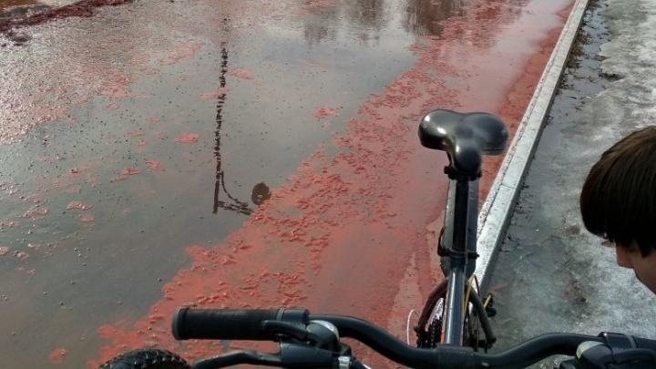 В администрации объяснили, почему в Затюменском облезла новая велодорожка