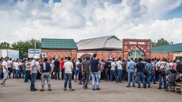 Ищут нелегалов: ОМОН нагрянул с проверкой на Хилокский рынок