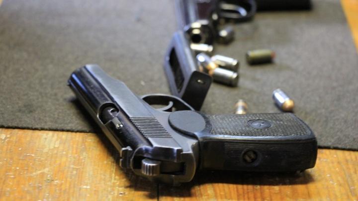 Северодвинского предпринимателя осудили за увлечение оружием