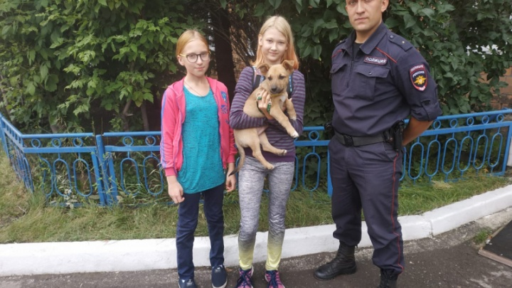 Сотрудники полиции подобрали щенка и вернули хозяйке на следующие сутки
