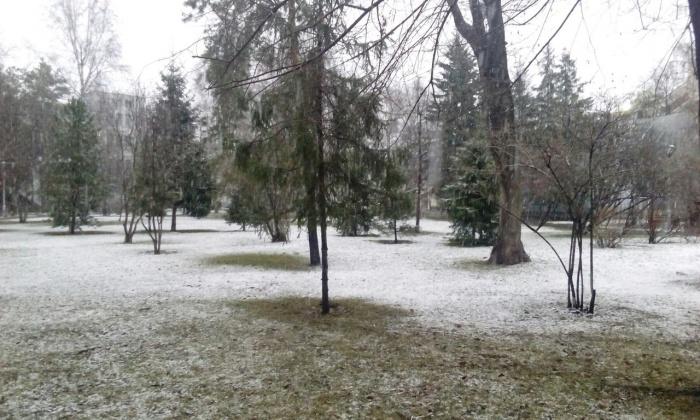 Трава в Первомайском сквере скрылась под слоем снега