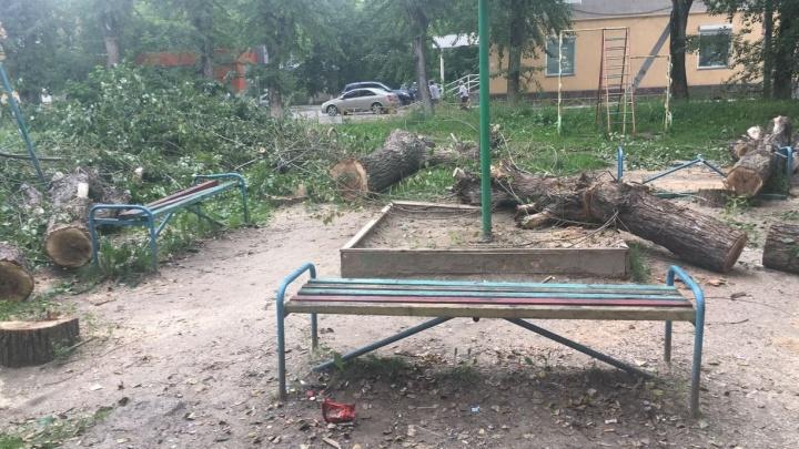 Во дворе на Компрессорном спиленные деревья разрушили детскую площадку
