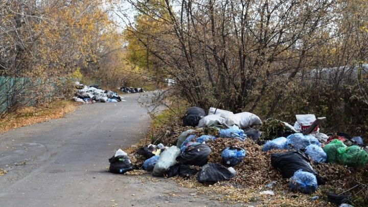 В минприроды заявили, что «Магнит» вывозит мусор с кладбищ с начала лета (на самом деле нет)