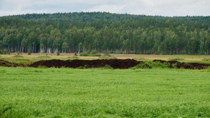 «Екатеринбург повезет мусор к нам»: жители Седельниково протестуют против нового полигона ТБО