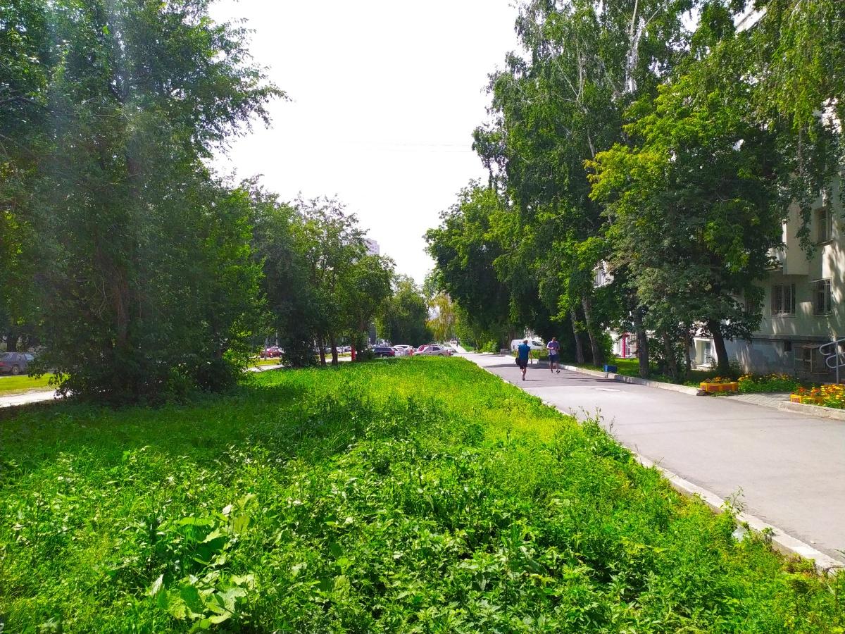До центра города можно дойти по тихим зелёным улицам за 15 минут