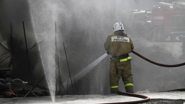 МЧС настаивает на введении особого противопожарного режима в одном из районов Челябинской области